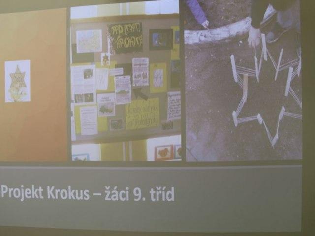 krokus 51